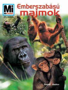 Mi MICSODA Emberszabású majmok